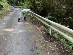 道路の清掃作業