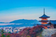 京都での仕事